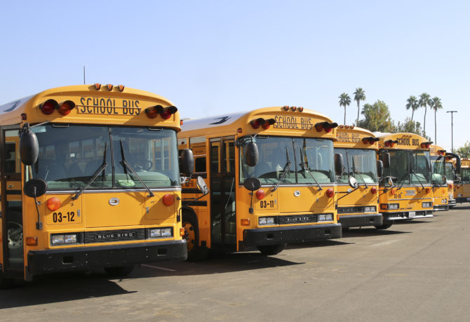 Line up of KCSOS school buses